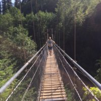Mann #3 Suspension Bridge, Lava Cyn