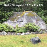 Sailor Vineyard