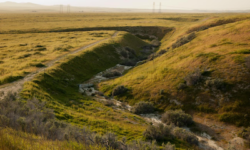 Wallace Creek on San Andreas fault (J.Karachewski)