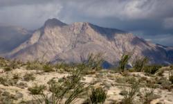 Anza-Borrego Desert SP, CA (J.Karachewski)